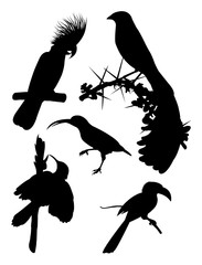 Black birds silhouette. Good use for symbol, logo, web icon, mascot, sign, or any design you want.