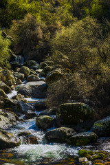 Small waterfalls in the glacial valley of the Zezere river in the Serra da Estrela mountains. County of Guarda. Portugal