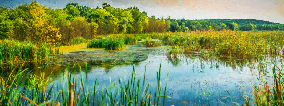 Reed areas on lake. Modern oil painting illustration art
