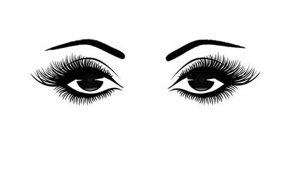 Beautiful woman's eyes close-up, thick long eyelashes, black and white vector illustration