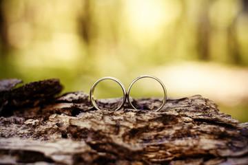 Wedding rings on a tree