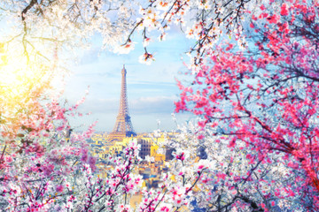 Aerial view of Paris cityscape with Eiffel tower with a blurred frame of blossoming trees at sunset. Vintage colored picture. Business, Love and travel concept