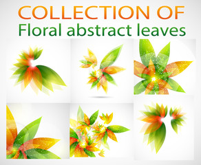 Collection of floral abstract vector background with green and orange leaves