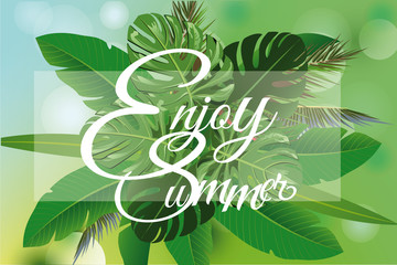 Summer tropical background with palm leaves. Vector illustration design.
