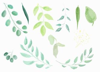 Set of watercolor leaves. Digital painting.