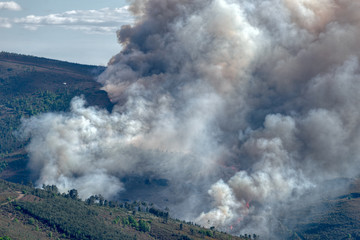 Forest fire in the Courel range