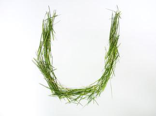 U letter of alphabet written with fresh green grass