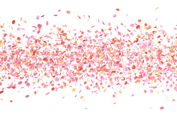 Colorful Flower Petals in Air