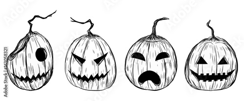 Halloween Pumpkin Drawing Picture.Halloween Pumpkin By Hand Drawing Halloween Pumpkin Sketch Vector