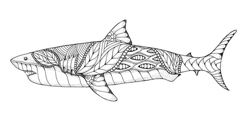 Zentangle and stippled stylized great white shark. Vector, illustration, pattern. Zen art. Black and white illustration on white background. Adult anti-stress coloring book.