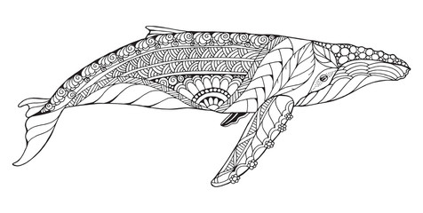 Zentangle stylized humpback whale. Vector, illustration, freehand pencil, pattern. Zen art. Black and white illustration on white background. Adult anti-stress coloring book.