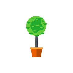 Trimming boxwood tree in pot icon