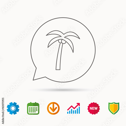 Palm Tree With Coconuts Icon Travel Or Vacation Symbol Nature