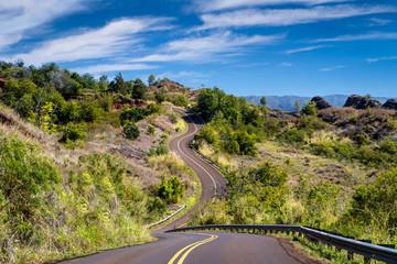 A view of a twisty road to Waimea Canyon in Kauai