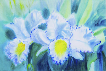 Painting white,yellow color of orchid flower and green leaves