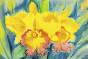 Watercolor painting yellow color of orchid flower and green leaves.