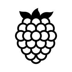 Blackberry fruit or blackberries line art vector icon for food apps and websites