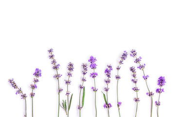 Keuken foto achterwand Lavendel Fresh lavender flowers on a white background. Lavender flowers mock up. Copy space.