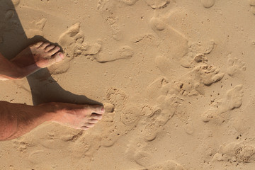 men's feet on the sand. top view of male feet on a sandy beach with footprints