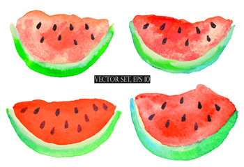 Vector set with watercolor slices of watermelon on white background