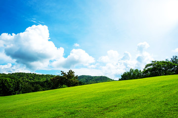 Green lawn on small hill with blue sky and white cloud in the background on sunny day
