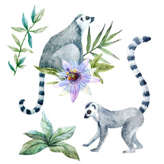 Watercolor lemurs with flowers