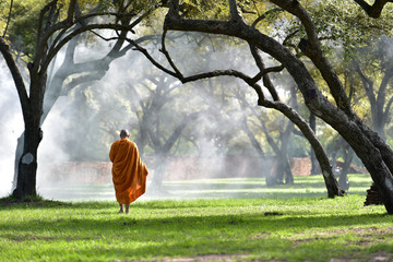 The monk walks in the park, the monk meditates under the Buddha's tree at Wat Ayutthaya, the Buddhist monk temple in Thailand.