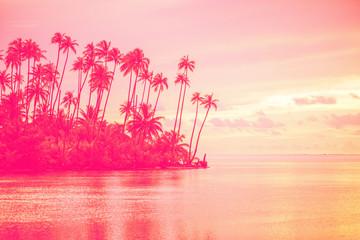 Stores à enrouleur Rose clair / pale paysage paradisiaque pour soiée et fête