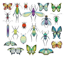 Colored insects isolate on white. Bugs and butterflies vector pictures set