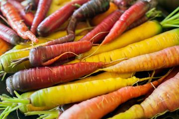 Organic multi-colored heirloom carrots