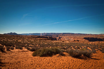 Desert in Arizona
