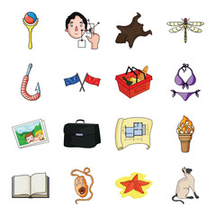 asterisk, sea, catand other web icon in cartoon styleanimal, walk, fauna. icons in set collection.