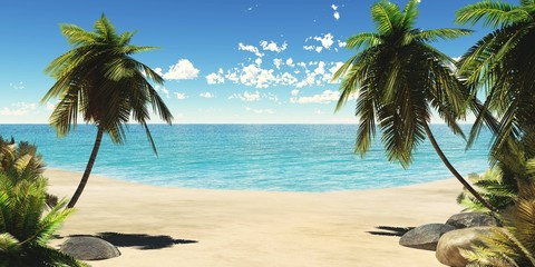 Tropical beach, sea shore with palm trees, ocean shore with tropical growth