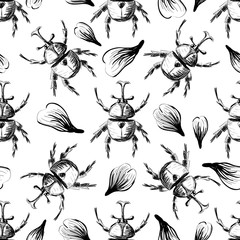 Hand drawn Sketch Beetles Seamless Pattern