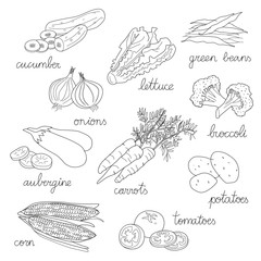 Set of isolated hand drawn illustrations of vegetables, in black and white: cucumber, lettuce, onions, aubergine, corn, tomatoes, carrots, broccoli,green beans