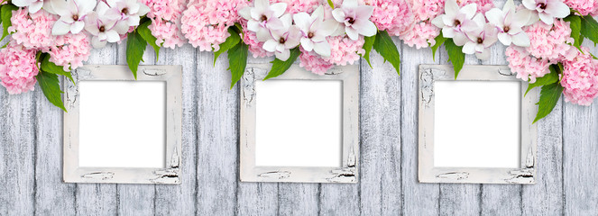 Photo frames with magnolia flowers, roses and hortensia
