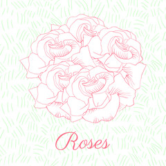 Pink roses vector pattern