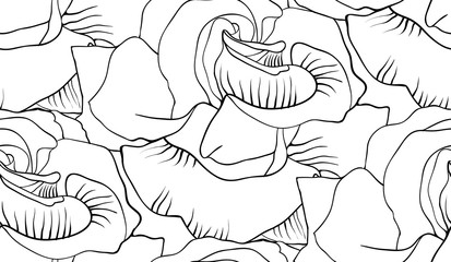 black and white roses vector pattern