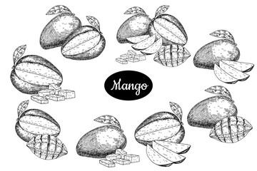 Hand drawn sketch style fresh mango.