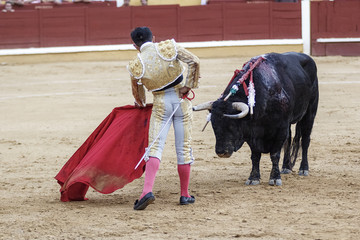 Poster de jardin Corrida Torero y toro en la plaza. Tarde de toros. Fiesta Nacional.