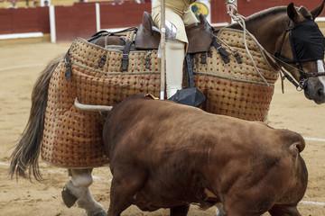 Picador castigando al toro. A caballo picando al toro. Lance de la corrida de toros.