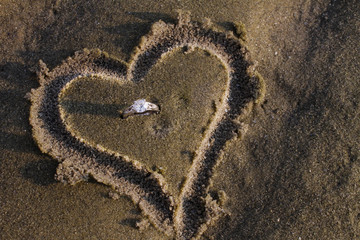 Engagement Ring in Sand Heart