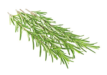 Pile of rosemary leaf isolated on white background