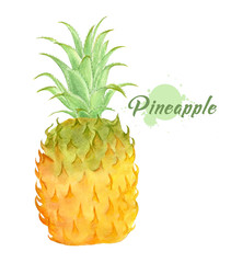 Photo sur Plexiglas Draw Watercolor fresh pineapple. Hand painted modern decorative fruit. single juicy pineapple isolated on white background. tropical fruit. Summer food illustration