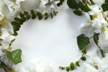 Flower frame made of fresh Iris white flowers and ivy (hedera) branches on white background. Flat lay, top view.
