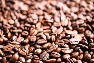 Dark roasted coffee beans background and texture, selective focus