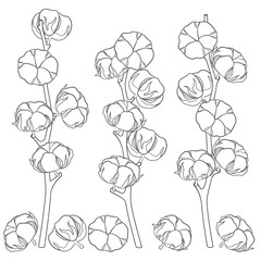 Illustration with cotton branches. Set of vector black and white isolated objects.