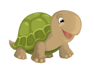 cartoon happy smiling turtle standing and looking - illustration for children