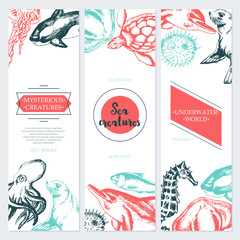 Sea Creatures - color drawn template banner.