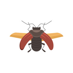 insect flat style vector design icons. nature beetle cartoon illustration